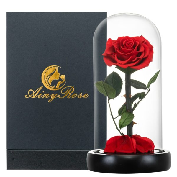 Fresh Flowers Red Eternal Roses with Light In Glass Dome Valentine Beauty Beast Christmas Gift